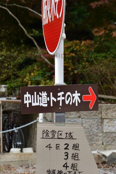 D71_7672.jpg